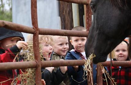 Five Head Start students smile and laugh as a horse eats hay.